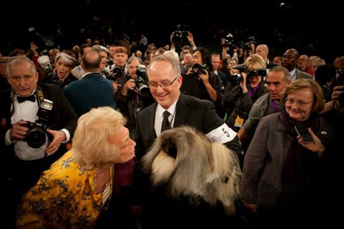 Malachy with owners LTR - Iris Love - David Fitzpatrick and Sandra Middlebrooks