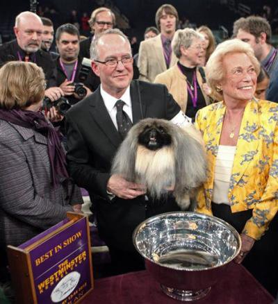 Owners David Fitzpatrick, center, and Iris Love, right, hold Malachy, a Pekingese, after Malachy was named best in show during the 136th annual Westminster Kennel Club dog show, Tuesday, Feb. 14, 2012, in New York. (AP Photo/Jason DeCrow)
