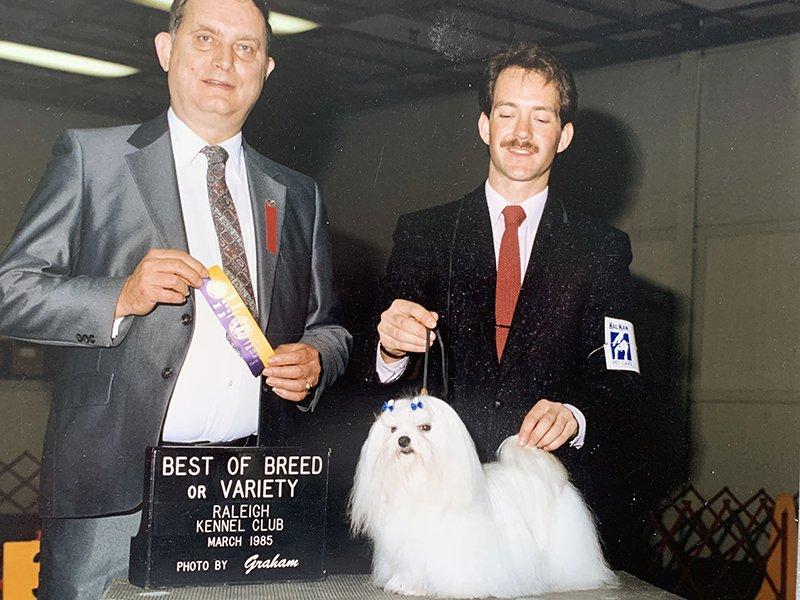 Maltese Best of Breed