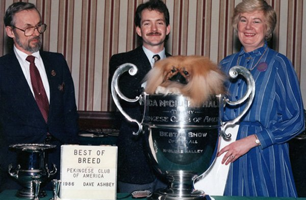 Ch Briarcourts Coral Gable Best of Breed PCA